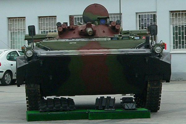 BWP-1M 2007