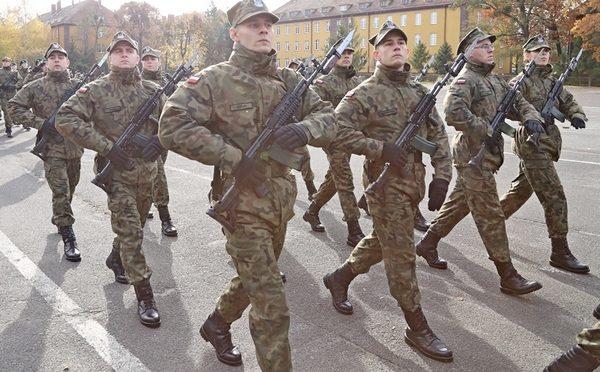 Uzbrojenie, wyposażenie i struktury Wojska Polskiego – Wojska Obrony Terytorialnej