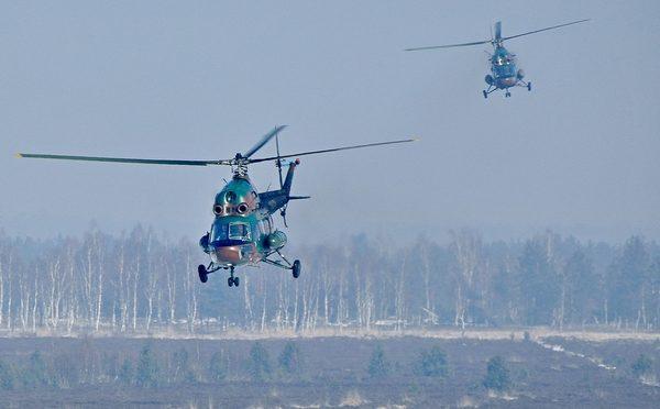 Mi-2 w Wojsku Polskim w 2017 r.